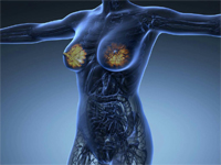 Medicinal Research Reviews on Mammary Gland