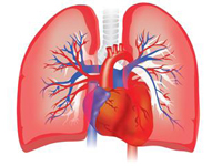 Free scholarly resources on Pulmonary Hypertension
