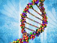 Top Molecular Biology Journals
