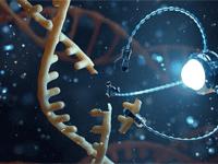 Scientific Innovations in Nanorobotics