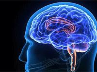 Journal Bibliography for Vascular Neurology